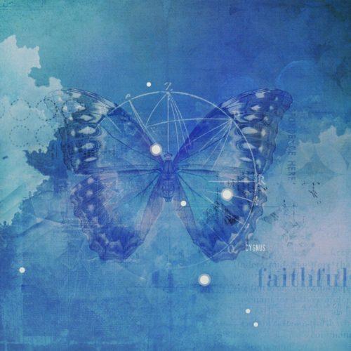 2fbfaithfulness_jc_butterfly_1000
